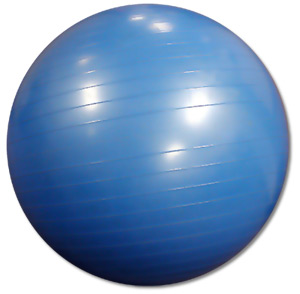 stability-ball[1]