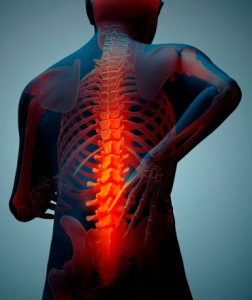 Back-Pain-crop-370x440WEB[1]