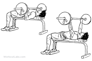 Barbell_Bench_Press[1]